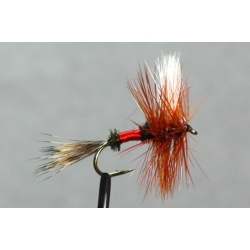 Fly - Royal Wulff Dry #10